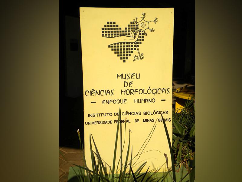 Inscrições abertas para visita técnica no Museu de Ciências Morfológicas da UFMG