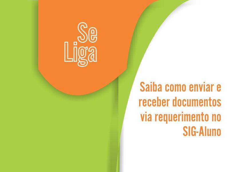 Saiba como enviar e receber documentos via requerimento no SIG-Aluno