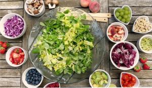 Estudo Experimental dos Alimentos